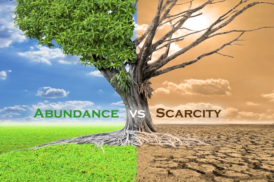 Your business' future lies in an abundant strategy – not in scarcity