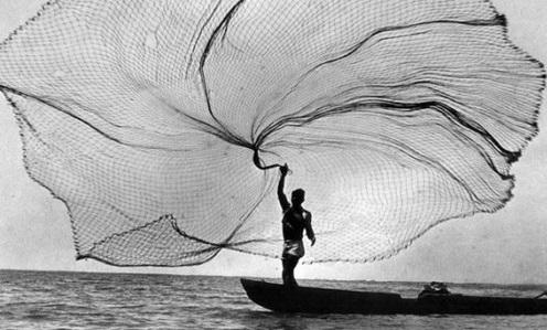 In transition? Cast a wide net