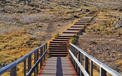 6 factors that will make or break your career transition journey